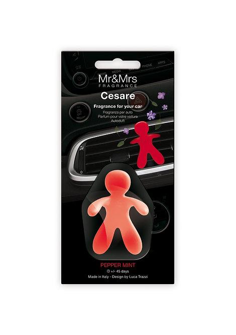 Cesare - Fragrance for Car (Blister)