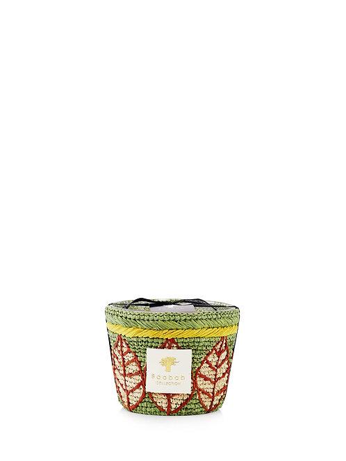 Baobab Collection Ravintsara - Ravina Candle (Max 10)