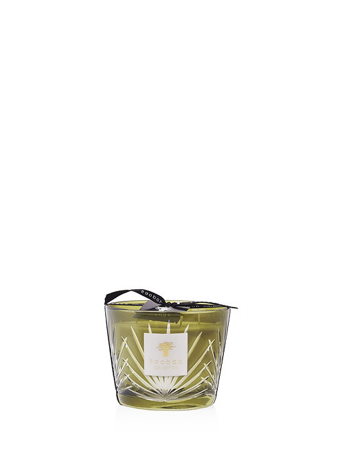Baobab Collection Palm - Palm Springs Candle (Max 10)