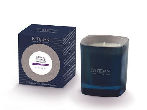Esteban Paris Parfums Blackberry & Wild Almond Scented Candle (170G)