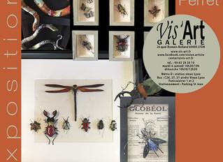 Les insectes en faïence émaillée de Carole PERRET