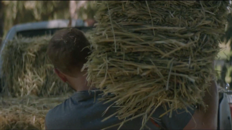 "Timberland ""Many Hats"""