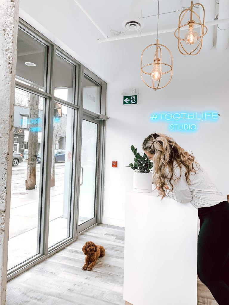 Front Desk and a Poodle