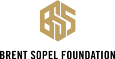 BSF-Logo-with-text-300x155.png