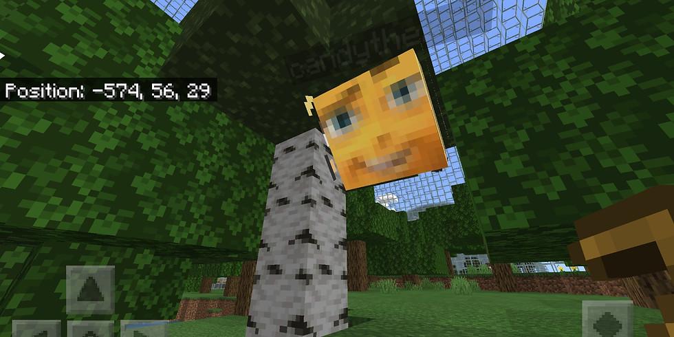 SNP Group Minecraft Online