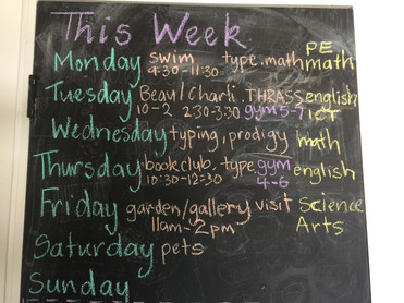 Weekly Home Education Schedule