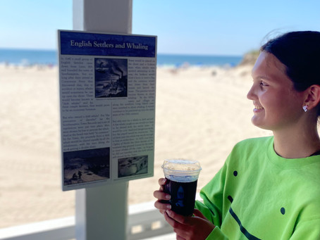 New Exhibit at Cooper's Beach - History of Whaling