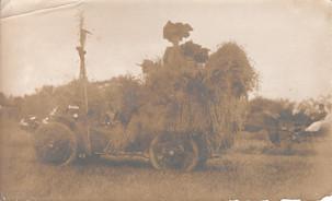 A hay ride
