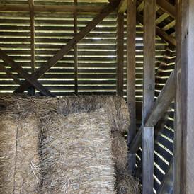 Corn Crib: Interior