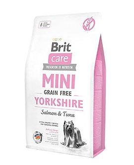 Mini Yorkshire 2 kg
