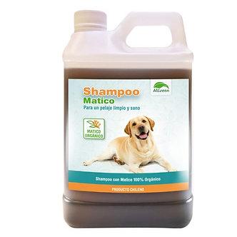 Shampoo de Matico 1 litro