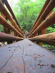 Foot bridge over a wild trout stream in the Nantahala National Forest.