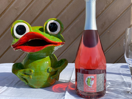 Kiss me – der neue Wein aus dem Thur-Seebachtal