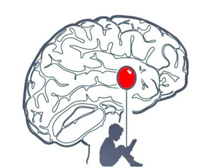 MINDFULNESS: Amígdala