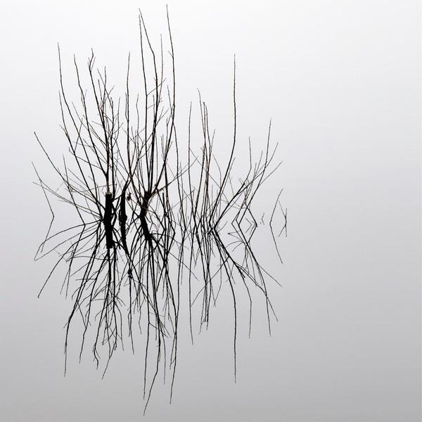 28 Reflection.jpg