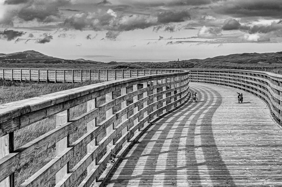 36 Boardwalk_.jpg