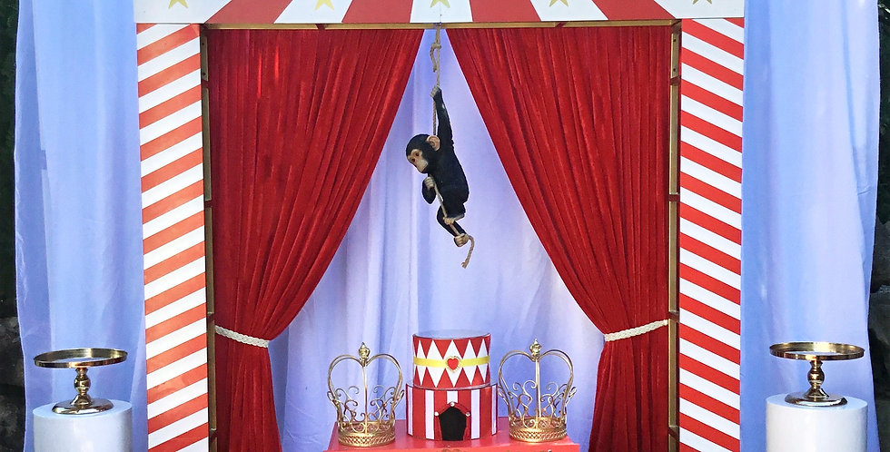 Circus Themed Package