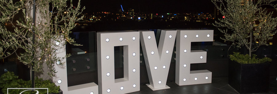 3 D White Giant  LOVE Letters with lights