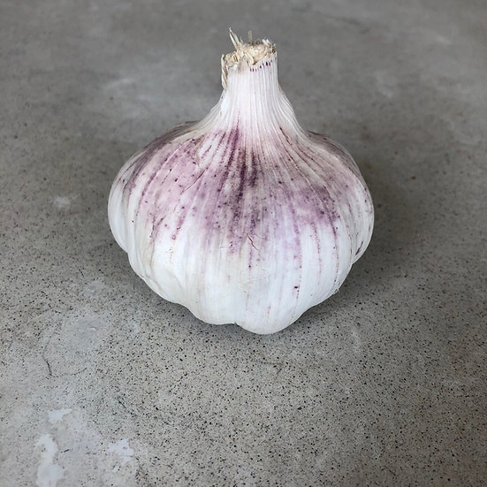 Garlic - 1 head