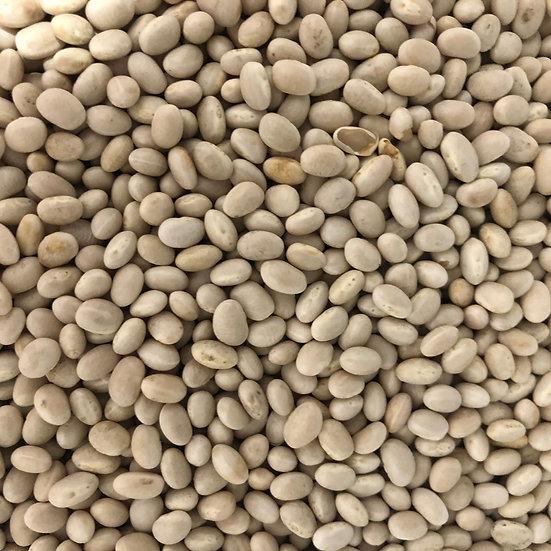 Beans, Dried, Navy (organic) - 2 lb