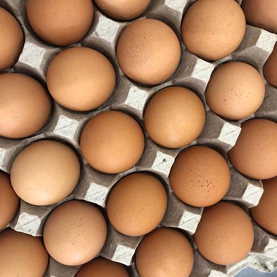 Eggs, Large (free-range) - 1 dozen