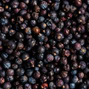 Spices, Juniper berries - 2 oz