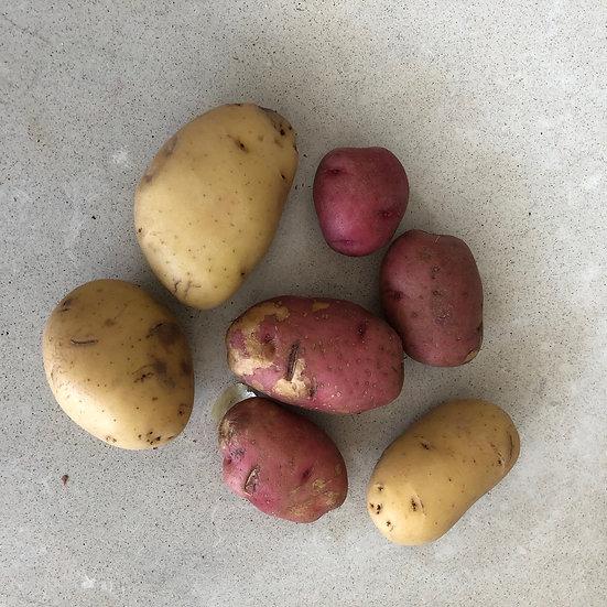 Potatoes, Mixed - 1 lb