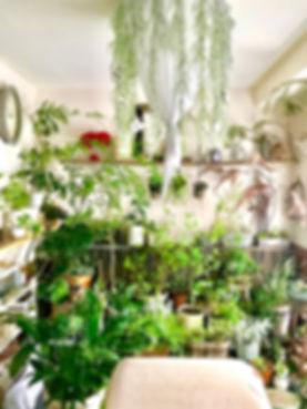 manimani店内2.jpg