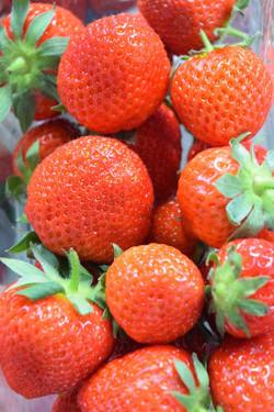 juiciest ....sweetest strawberries