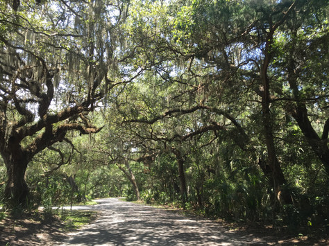 Biking Fort Clinch State Park Amelia Island