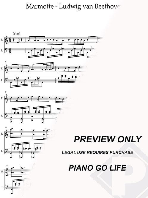 Beethoven - Marmotte (La Marmotte) Sheet Music