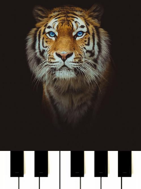 Survivor - Eye Of The Tiger Sheet Music