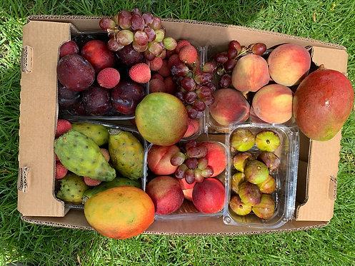 ארגז פירות עונה מובחרים