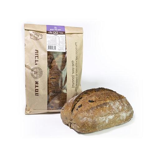 לחם כפרי זיתים - עובדי אדמה