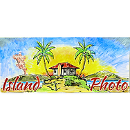 Island Photo Logo.png