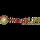 Hawaii USA Logo.png