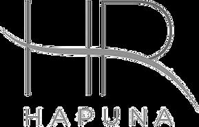 Hapuna Realty Logo.png