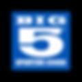 Big 5 Logo margins.png