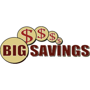 Big Savings Insurance logo.png