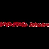 Loco Moco Drive Inn Logo.png