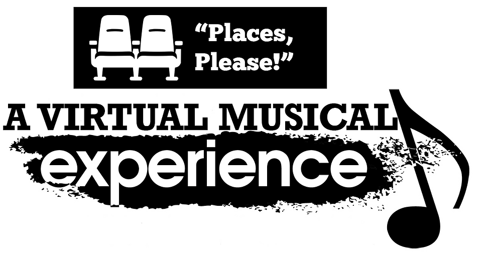 A VIRTUAL MUSICAL EXPERIENCE.png