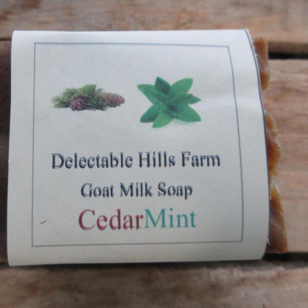 Cedar Mint