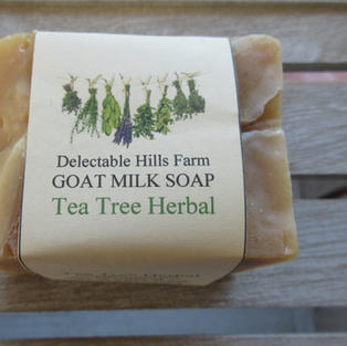Tea Tree Herbal