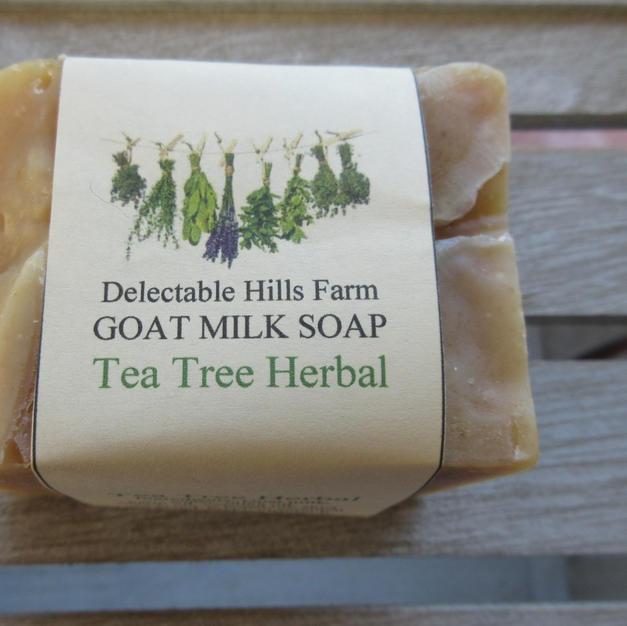 Tea Tree Herbal