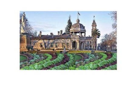 Bendigo vegetable growing vision-1.jpeg