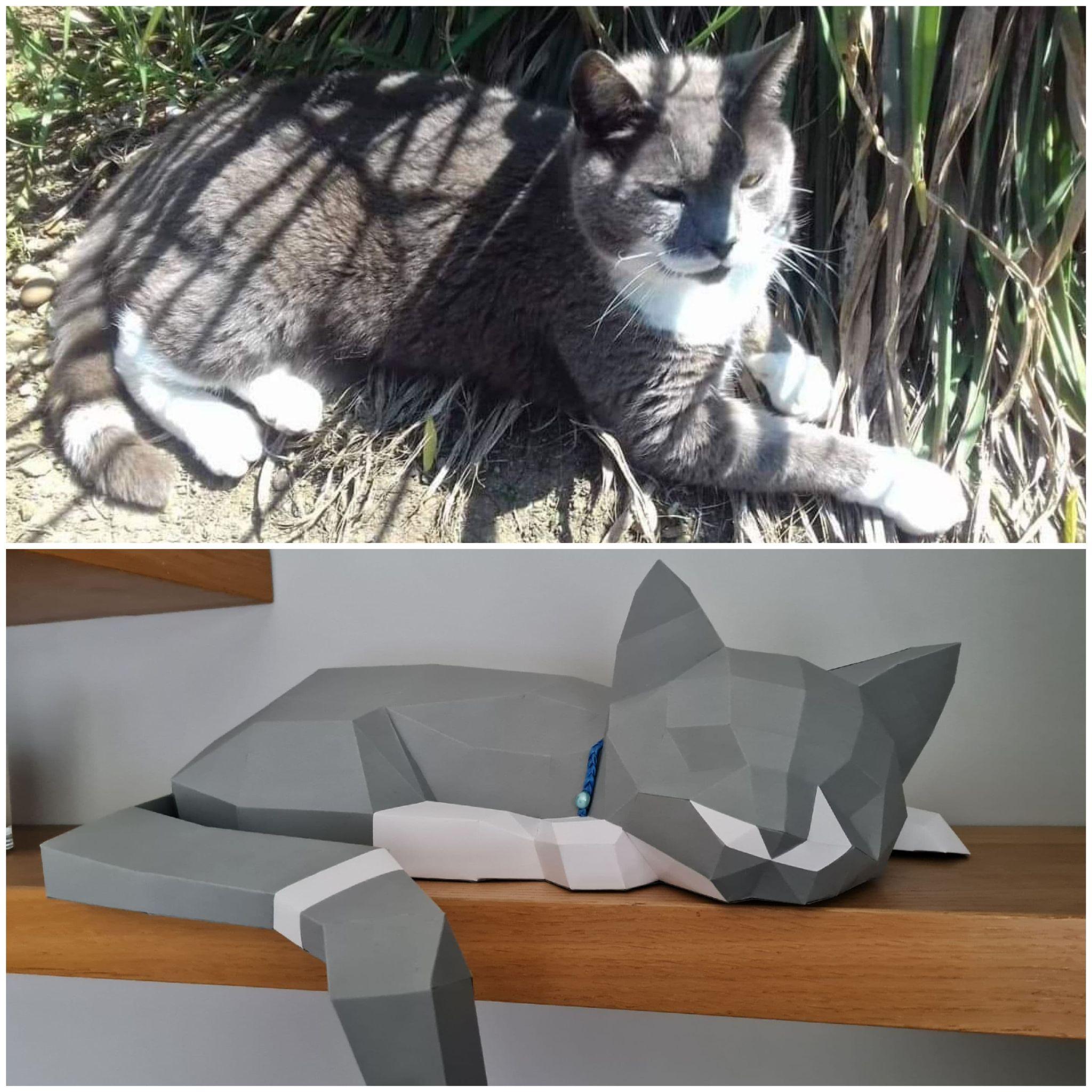 3D Paper Cat Models