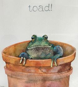 Toad! by Linda Owen