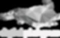 digital platypus logo white
