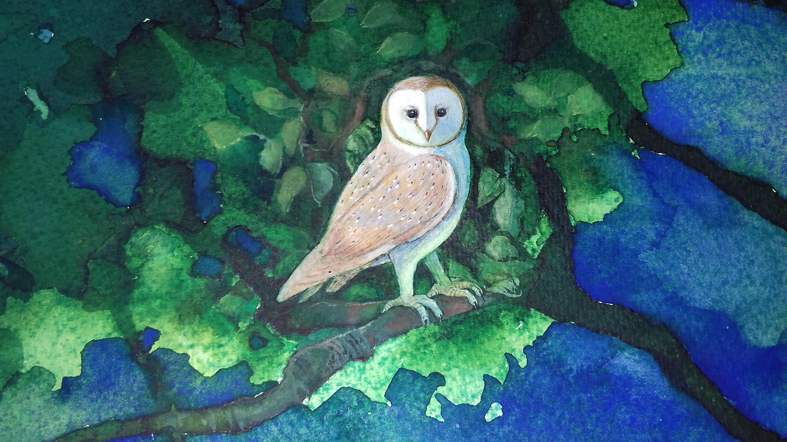 Midnight Owl by Linda Owen