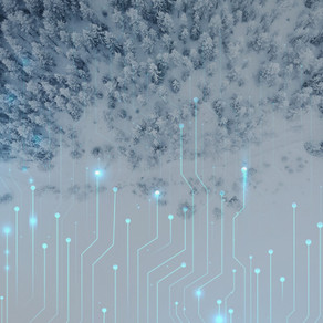 WINTER IS (NOT) COMING: Is Explainable AI (XAI) the Answer?